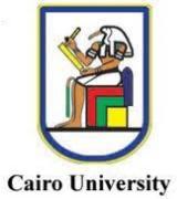 カイロ大学